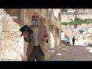 От первой до второй Пасхи Первое пасхальное путешествие Очищение храма