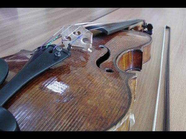 Скрипка Гварнери Белорусской академии музыки