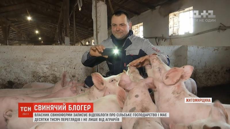 На Житомирщині власник свиноферми записує відеоблоги про сільське господарство