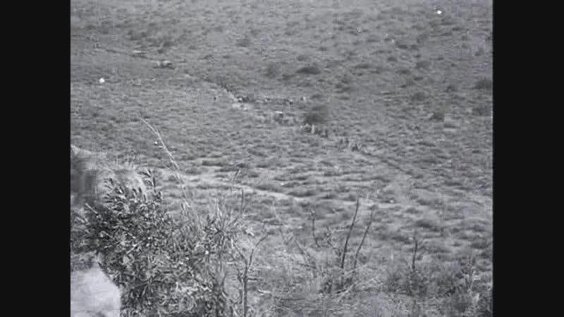 1913 Бойня - Massacre (D.W. Griffith) [DIVX 720p]
