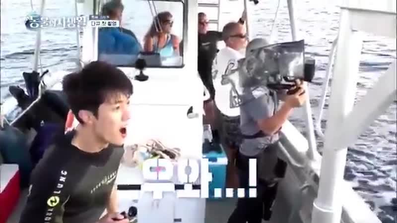 เด็กประถมซองยอลเห็นปลาวาฬดีใจใหญ่เลย 성열