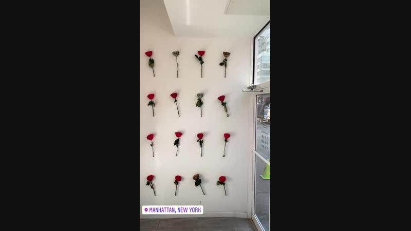 StorySaver_newyork_by_veronica_52409079_116934136077200_4538239738810780106_n.mp4