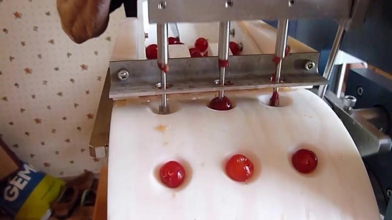 Denoyauteur de cerises automatique electrique or cherry stoner