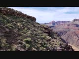 The Grand Canyon - 18