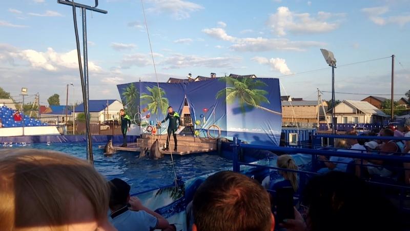 Дельфинарий в Соль Илецке