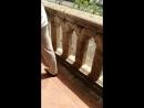 Дворец Диего Колумба Винтовая лестница и балкон вид на город Что характерно винтовая лестница не в ту сторону часовой ст