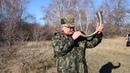 В Краснокутском районе начались состязания гончих по зайцу-рысаку