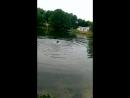Дана на втором озере. Марьина роща.