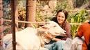 Joy of Krishna Consciousness 053 Hare Krishna Kirtan by ISKCON Studio