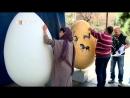 En Teherán pintan huevos en vísperas del Año Nuevo persa