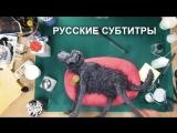 Остров собак. Как это сделано - Куклы | Русские субтитры (WT)