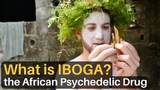 What is IBOGA The African Psychedelic Drug...