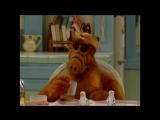 Alf Quote Season 2 Episode 24_Хуже