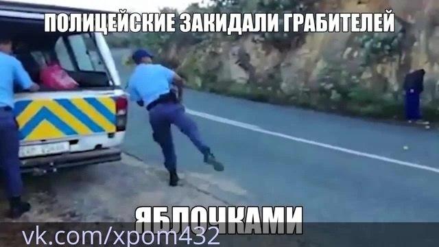 Xpom432 vs. Дружко Воровали Яблочки