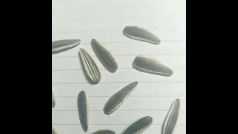 Три семки из них нарисованы.