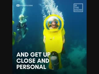 Now you can travel underwater in your own personal submarine.