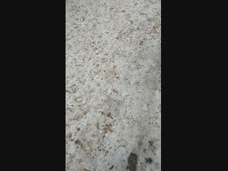 VID_20181208_153044.mp4