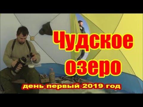 Чудо Peipsi 2019 Чудское озеро СЕЛИТЕРНАЯ ПЛОТВА или НЕТ дер Спицино 18 января