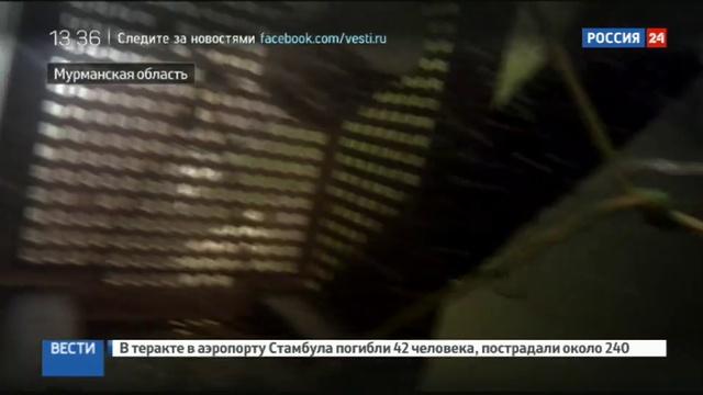 Новости на Россия 24 • Кольский залив очищают от мусора и затонувших судов