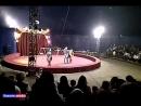 Цирк шапито Олимп. п.Локоть 21.04.18