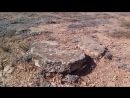 Севастопольский берег и остатки древней крепости