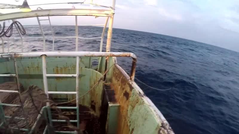 Береговая охрана ФСБ России задержала браконьерское японское судно в Приморье