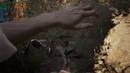 Resident Evil 7 на ультрах На слабом пк выжал все соки идет на ура