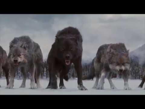 Финальная битва - Сумерки. Сага. Рассвет Часть 2 (2012)