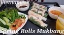 Vietnamese Spring Rolls ASMR   Mukbang