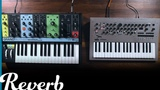 Monophonic vs. Polyphonic Synthesizers Which is Right For You Reverb