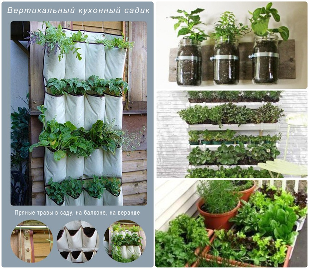 Кухонный садик на даче, рекомендации по созданию, схемы