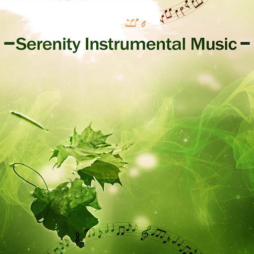 Instrumental альбом Serenity Instrumental Music – Perfect Instrumental Music, Ultimate New Age Music