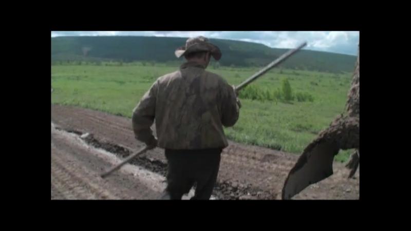 31 рейс Режиссер Денис Клеблеев 2013