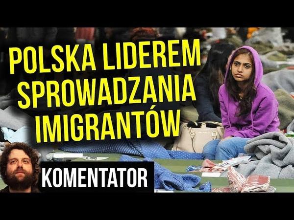Polska Przyjmuje Najwięcej Nachodźców NA ŚWIECIE. Komentator