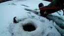Первый лед ратан Часик на пруду 15 штук поймал