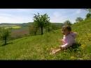 «Дикая природа Германии (07). Тюрингский лес» (Познавательный, животные, 2012)