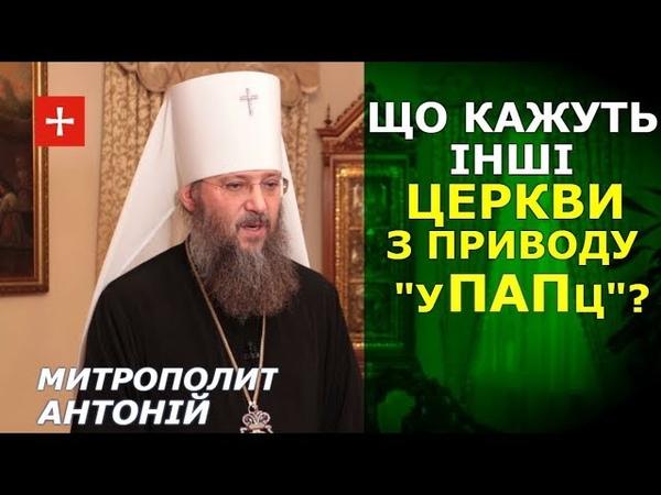 Як інші Церкви реагують на собор і створення нової церкви в Україні. Митрополит Антоній