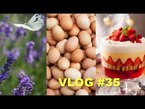 Английские вкусняшки Яйца Лавандовая ферма