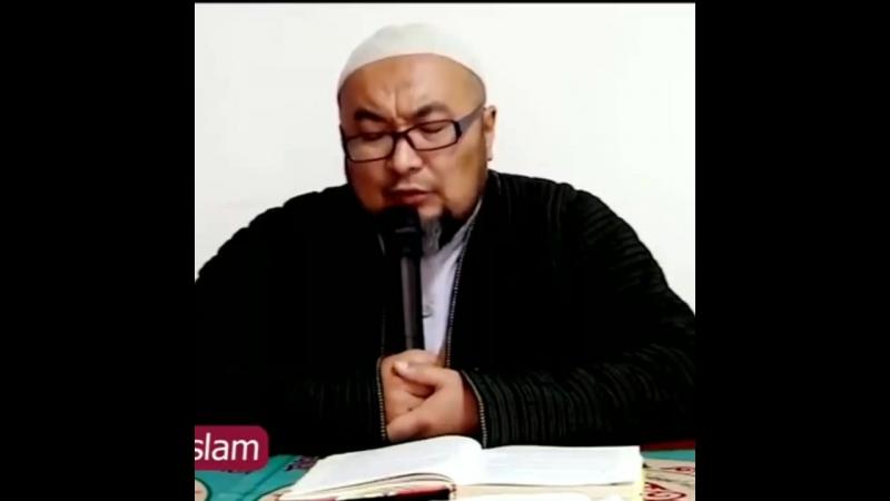 шейх Чубак ажи Жалилов - должен ли муж советоваться с женой?