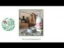 Пьют ли кошки молоко Выборгское