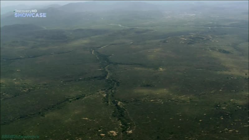 BBC «Прогулки по Южной Африке (3). Национальный Парк Крюгера» (Познавательный, природа, путешествие, 2010)
