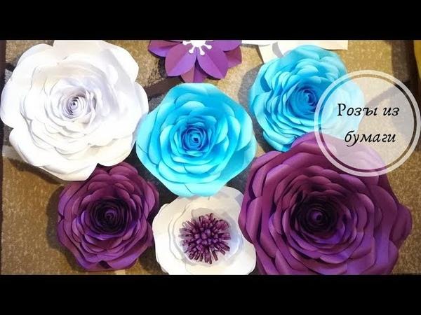 Объемные розы из офисной бумаги для оформления стены