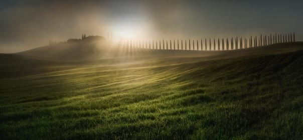 """""""Расчесывая солнечный свет"""" (Тоскана, Италия)"""