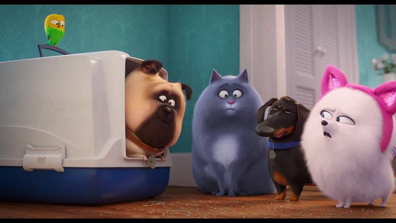 Тайная жизнь домашних животных 2 - новый трейлер.