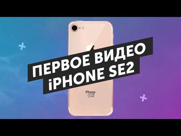IPhone SE2 на видео и очки с камерой Spectacles V2