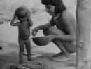 O Povo Brasileiro por Darcy Ribeiro - Matriz Tupi (Vídeo 480p)