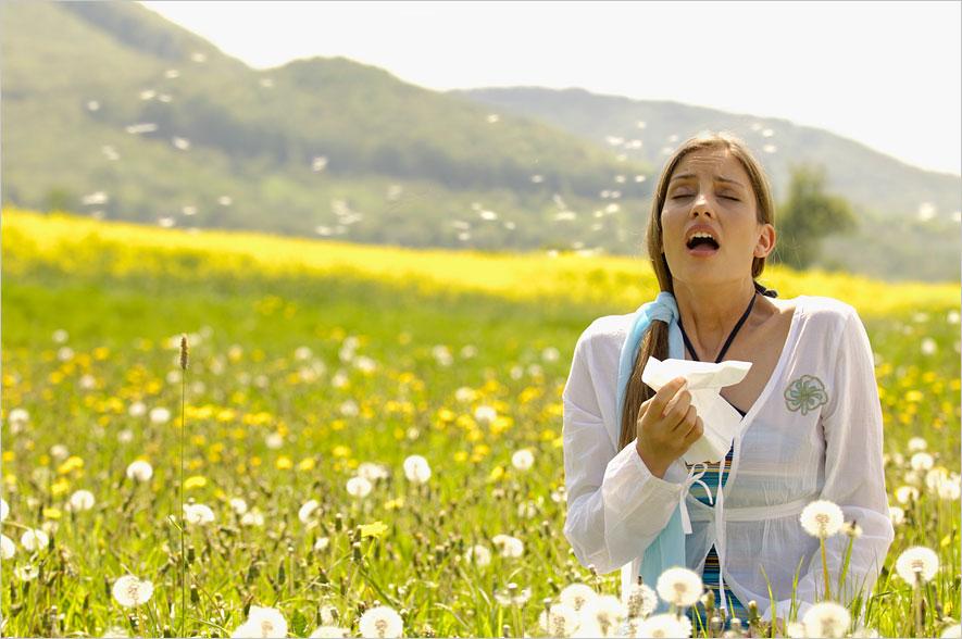 Небольшое количество порошка спирулины может помочь уменьшить симптомы сенной лихорадки.