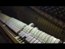 Interstellar First Step Hans Zimmer soundtrack - church Organ _ piano cover epic