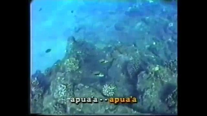 хуму нуку апуа.а