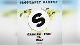 Garmiani vs. Zedd &amp Botnek-Fogo &amp Bumble Bee (Neoplanet Mashup)